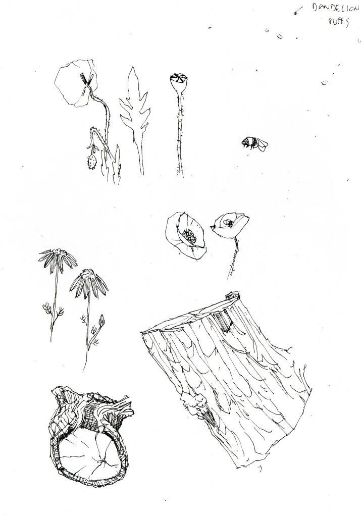 Gunnersbury park sketch drawing