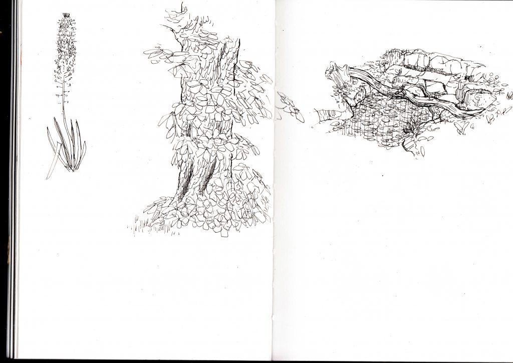 Gunnersbury park sketch